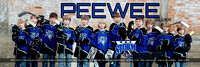 PeeWee Silver Poster 2016-2017